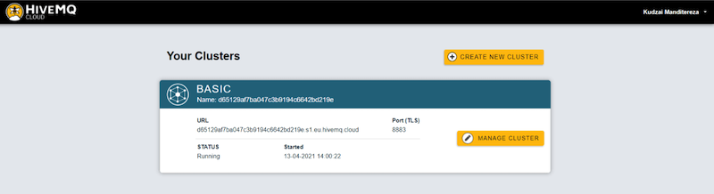Creating and managing cluster inside HiveMQ Cloud MQTT broker